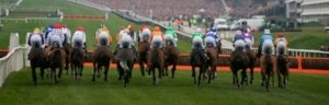 Cheltenham Festival 2021 – Silks Hospitality – Friday 19th March 2021 - Gold Cup Day