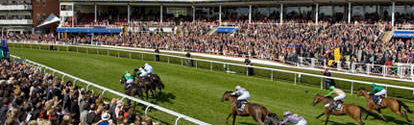 Chester May Festival Ladies Day Wednesday 6th May 2020